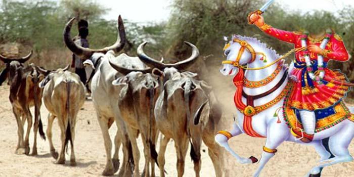 गौरक्षा के लिए इस वीर ने किया था प्राणों का उत्सर्ग, लोकदेवता के रूप है मान्यता